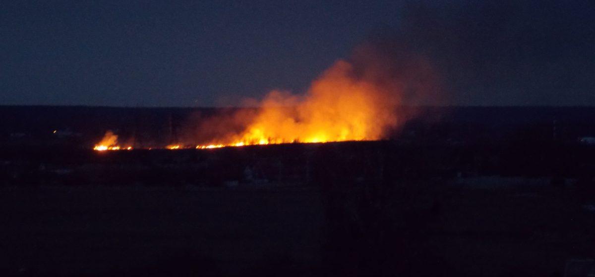Фотофакт. В Боровках горела трава, пламя быстро распространялось