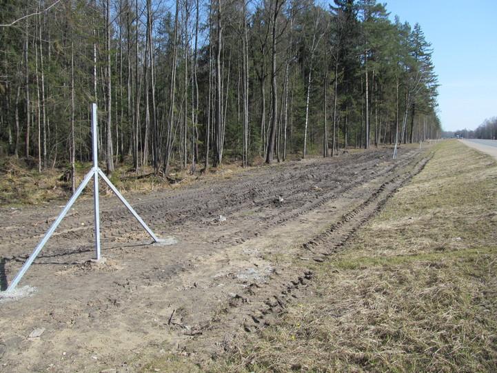 С трассы Минск – Гродно украли 98 столбов для ограждения вдоль леса