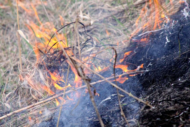 В Столинском районе при выжигании сухой травы погиб 61-летний мужчина