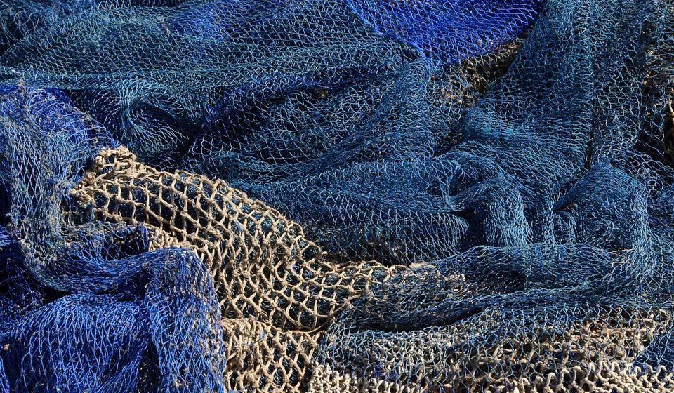 Барановичские инспекторы задержали двух мужчин за незаконную ловлю рыбы