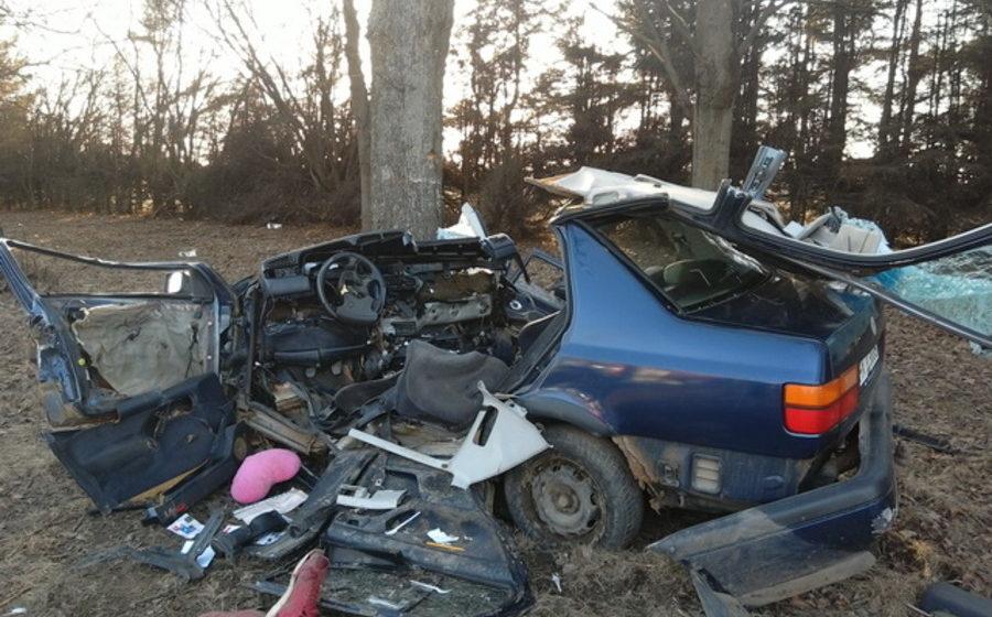 Под Фаниполем автомобиль с пьяной компанией врезался в дерево — один человек погиб, еще три в реанимации