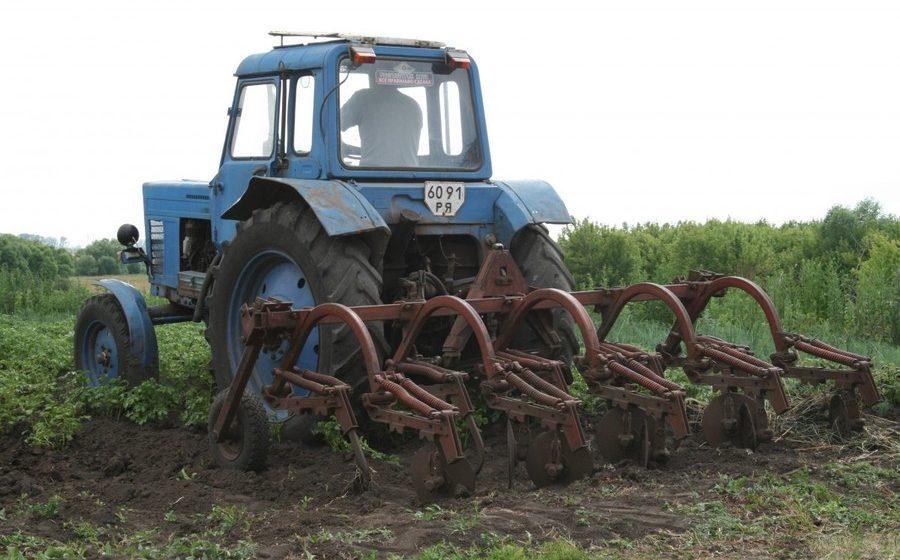 Нужна ли Беларуси частная собственность на землю? «Получат работу 750 тысяч белорусов, и не надо будет гастарбайтерствовать в России»