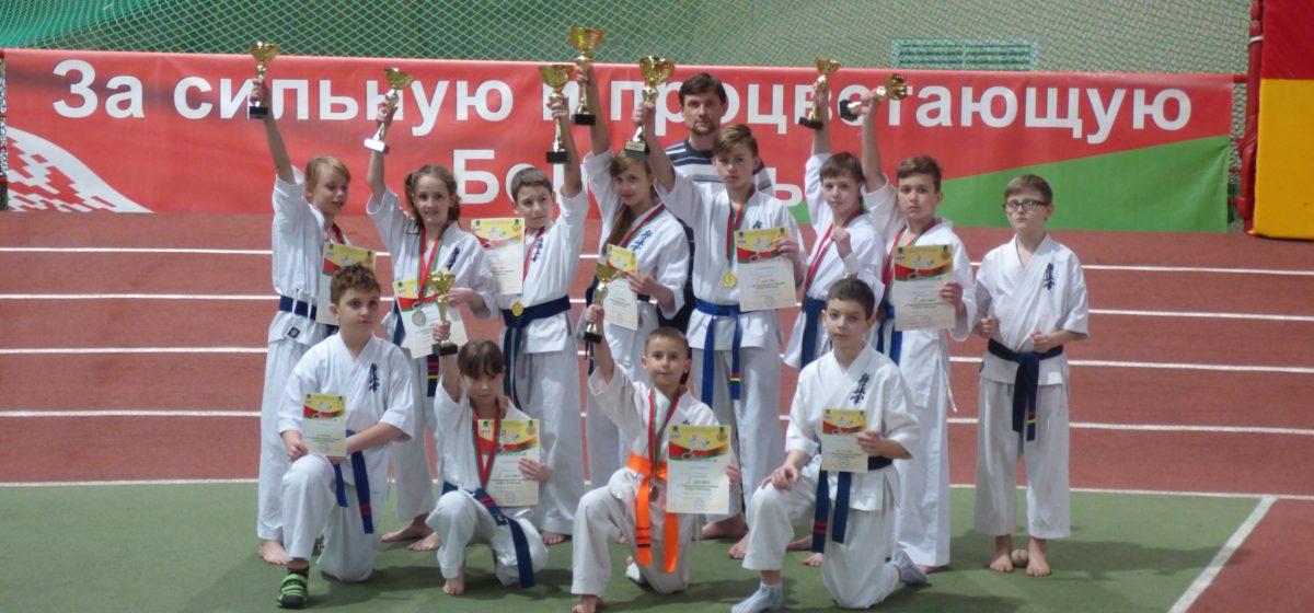 Юные барановичские каратисты завоевали девять медалей международного турнира