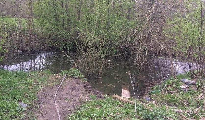 В Сенненском районе в водоеме утонула годовалая девочка