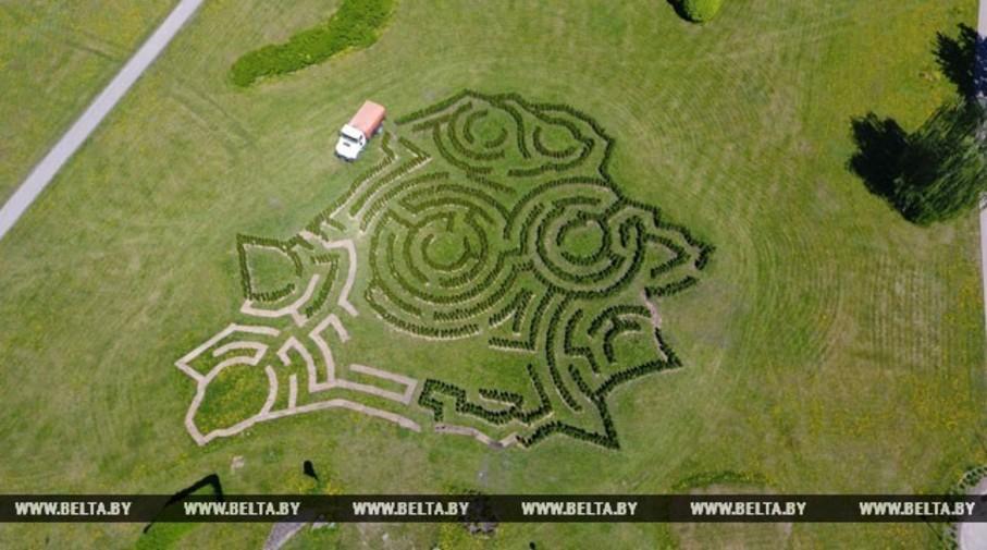 Фотофакт. В Минске высаживают живой лабиринт в форме карты Беларуси