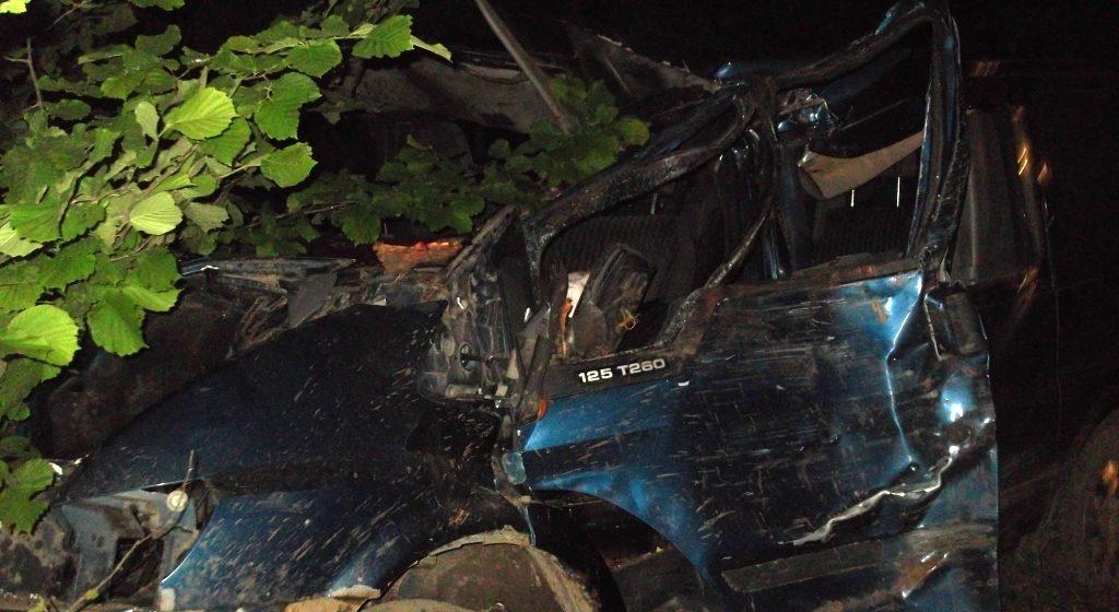 Микроавтобус с гражданами России и Молдовы столкнулся с лосем – один пассажир погиб