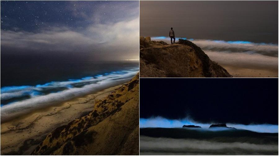 Видеофакт. В Калифорнии океан начал светиться ярко-голубым светом