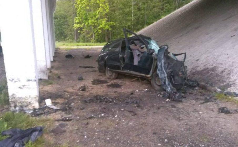 Под Могилевом легковушка врезалась в опору моста — погиб 36-летний водитель (фото)