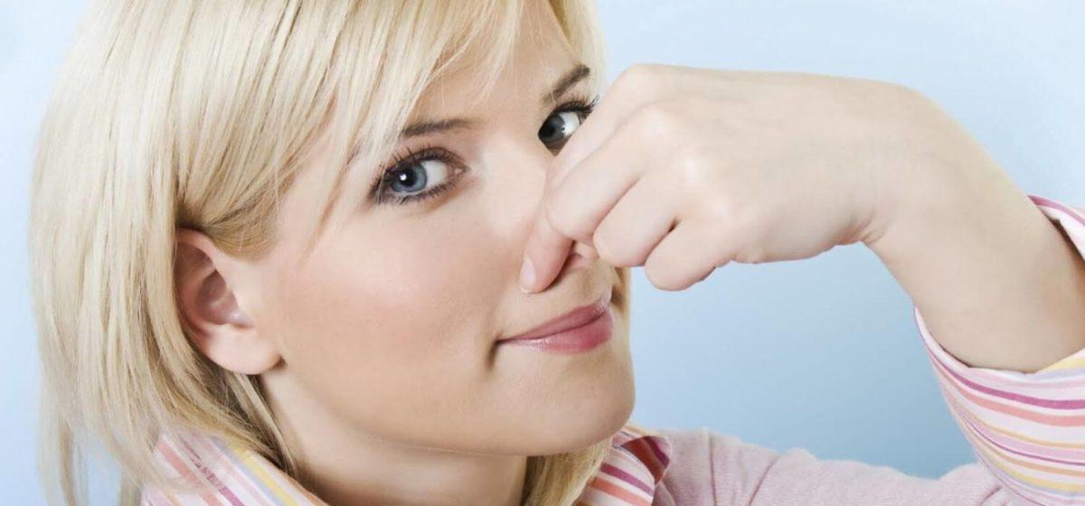 Холодный нос: норма или повод для тревоги?