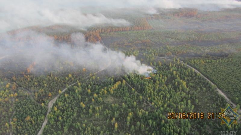 МЧС: лесной пожар в Барановичском районе потушен (фото)