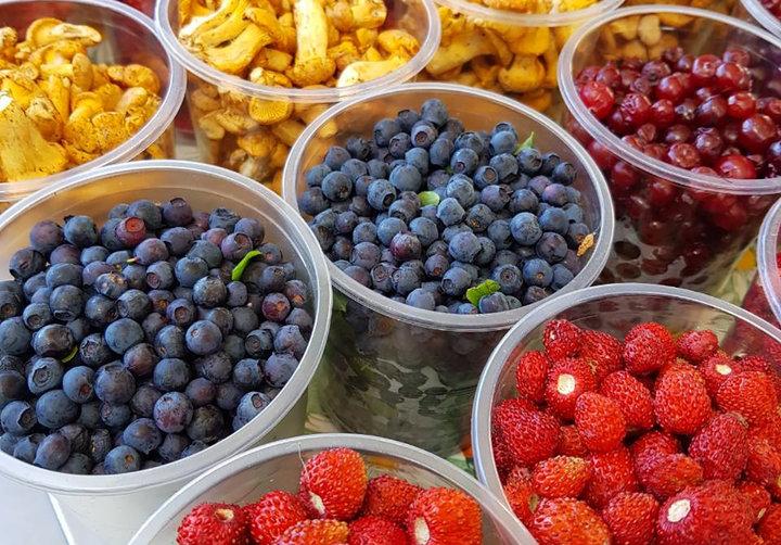 Запрет на сбор ягод