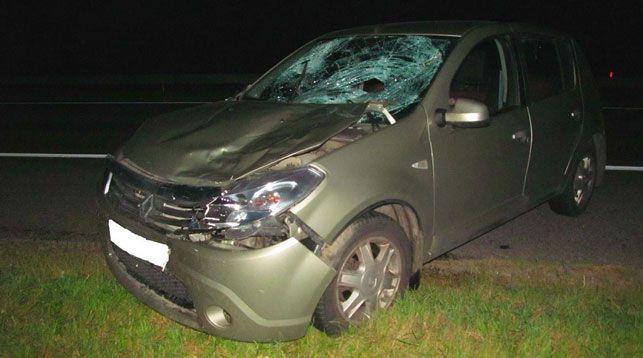 В Борисовском районе легковушка насмерть сбила 26-летнего пешехода