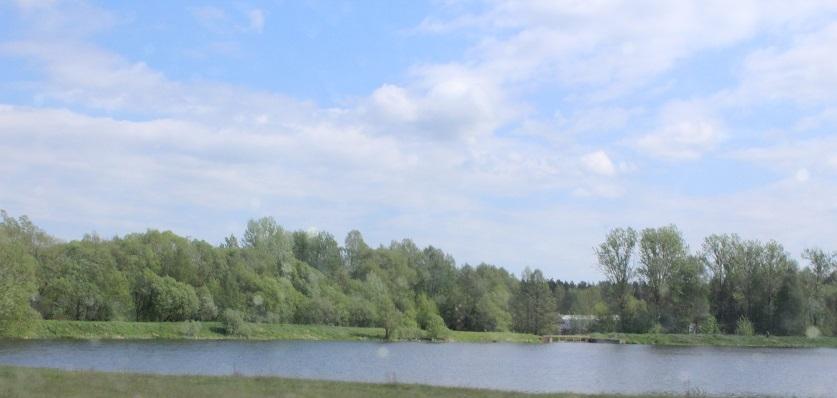В Копыльском районе в водоеме утонул 10-летний мальчик