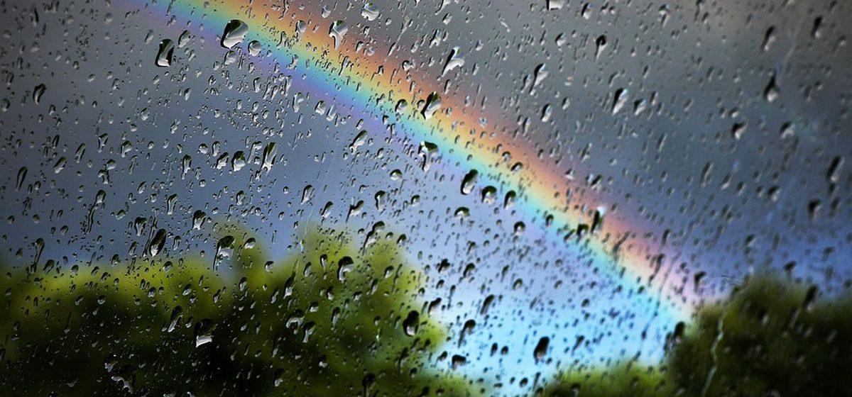 Метеоролог: дожди в Барановичах скоро прекратятся