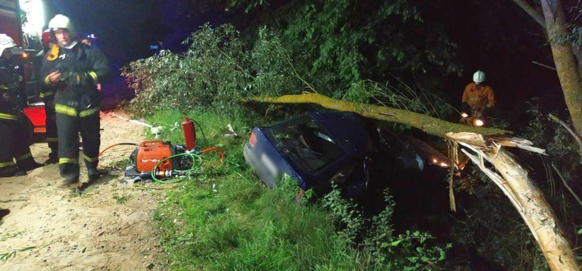 Под Жабинкой пьяный бесправник врезался в дерево, пассажир погиб, водитель в больнице
