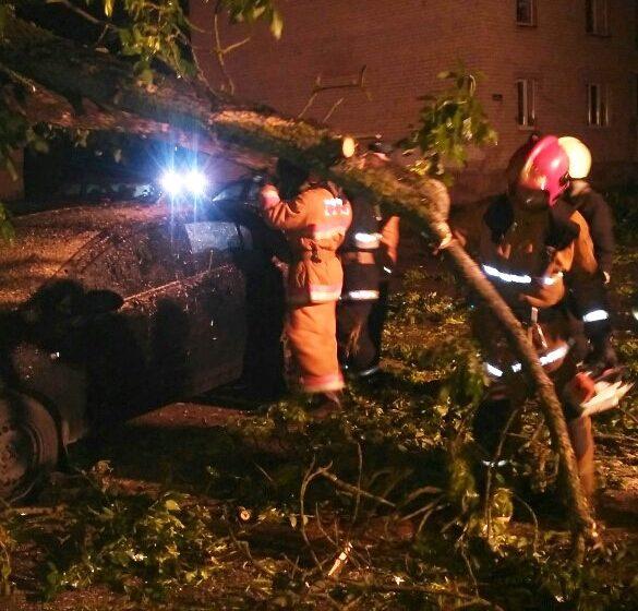 Фотофакт. В Барановичах на машину упало дерево