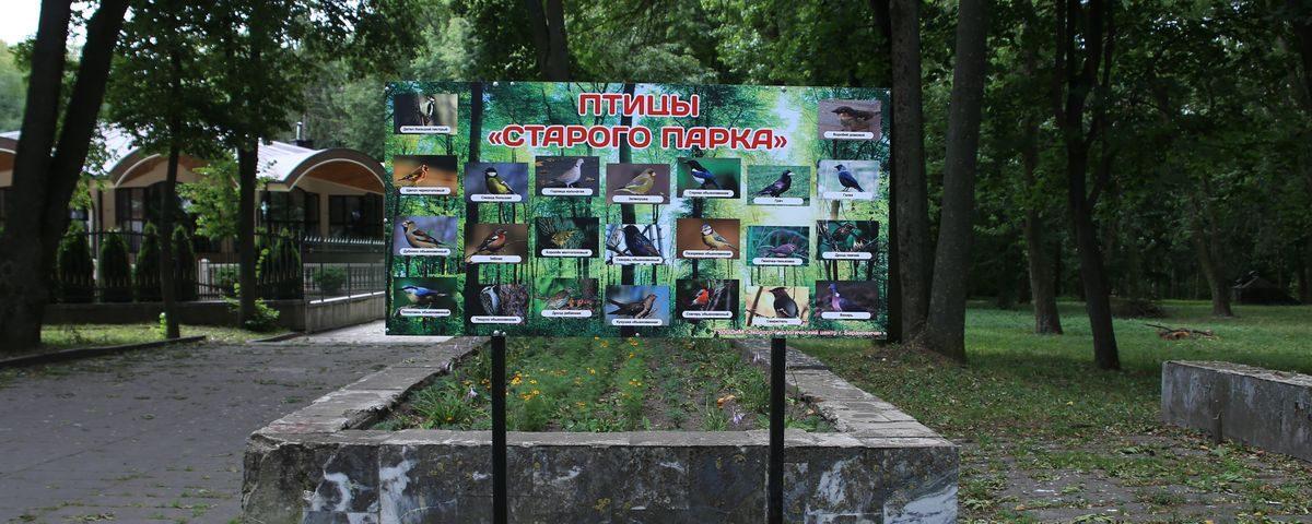 В старом парке Барановичей установили стенд с фотографиями обитающих в нем птиц