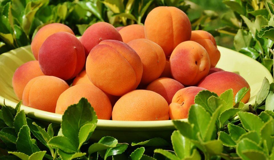 Заболевания, при которых нельзя есть абрикосы