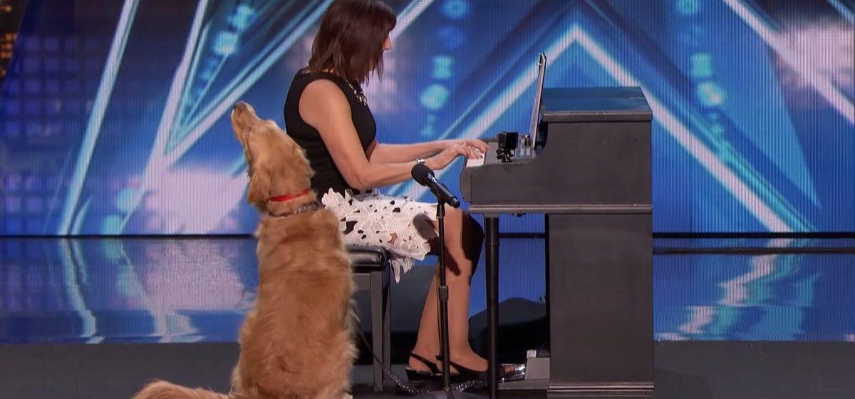 В США собака спела на конкурсе талантов и прошла в следующий этап