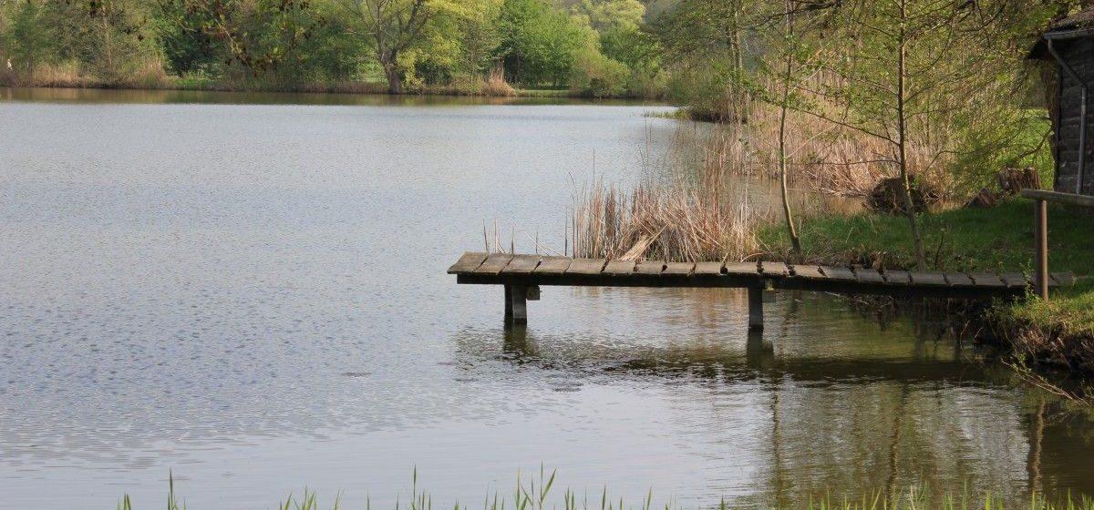 В Ляховичском районе утонул житель Барановичей