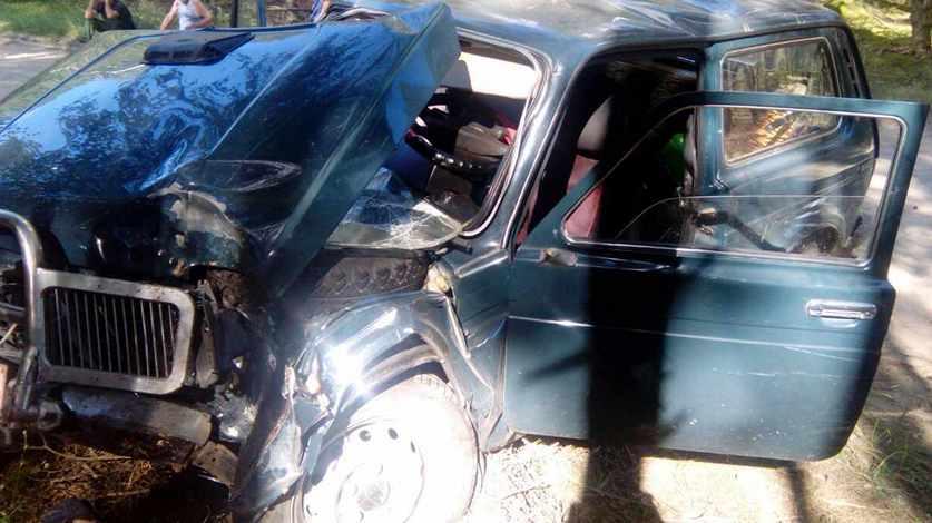 В Рогачевском районе водитель, у которого в крови было 3,68 промилле, поехал с друзьями на рыбалку, его остановило дерево