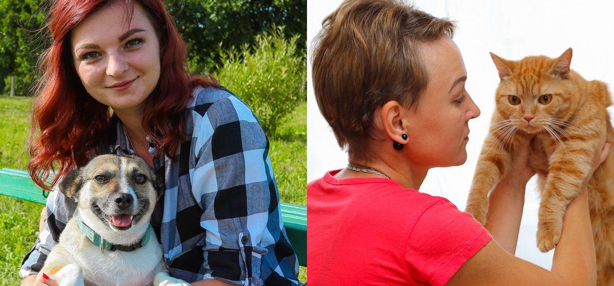 «Фиксик стал членом нашей семьи». Жители Барановичей – о том, как приютили бездомных животных