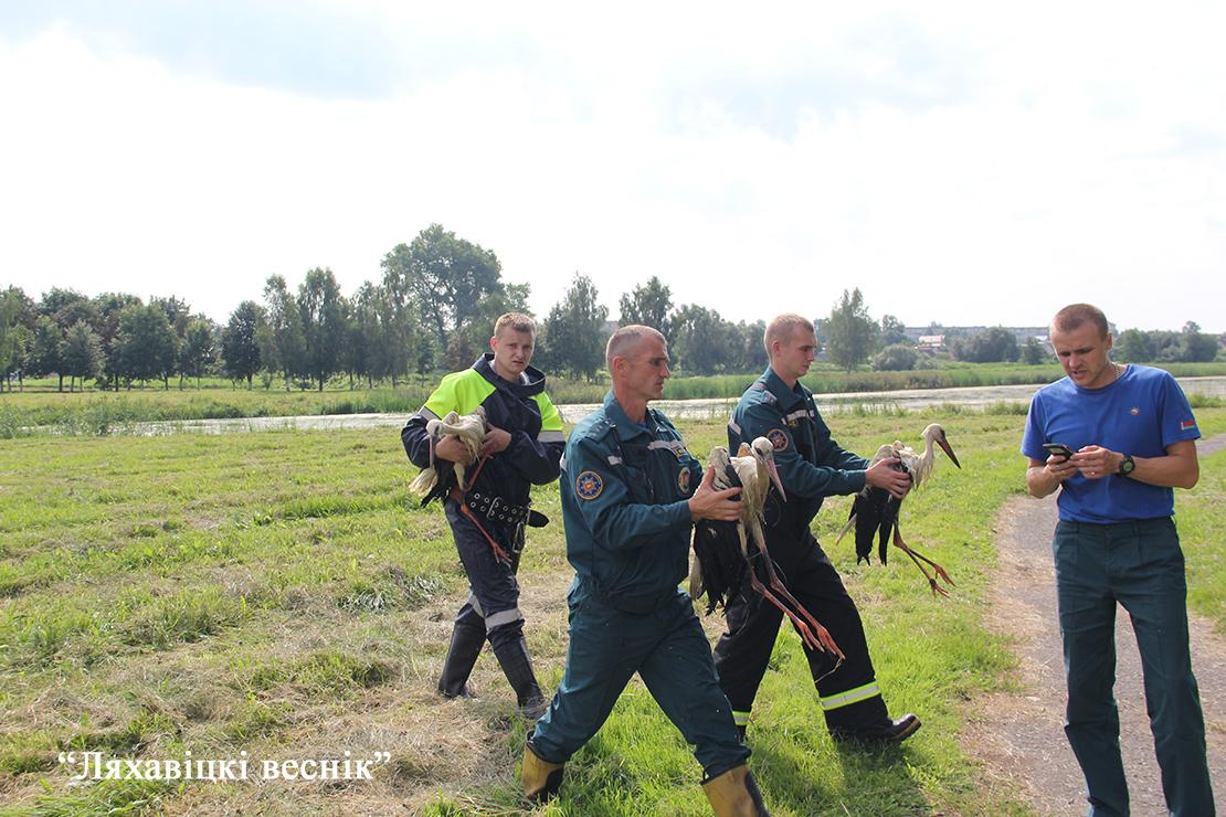 Фото: Ляхавіцкі веснік http://www.lves.by/