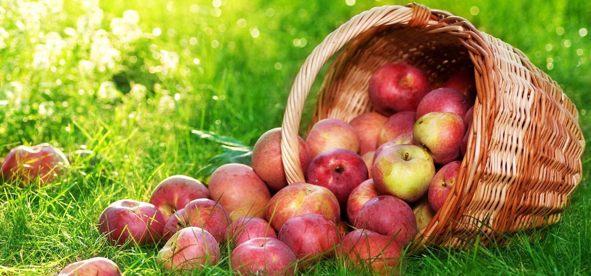 Яблочный Спас: блюда к праздничному столу