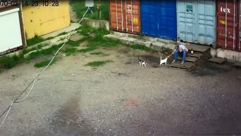 Скриншот с видео, sk.gov.by