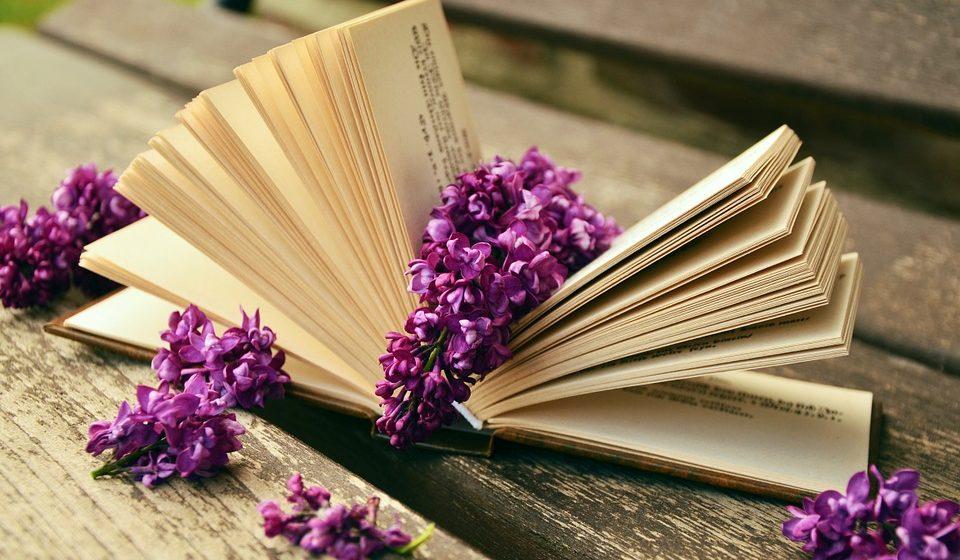 Тест. Узнаете ли вы книгу по первой фразе?