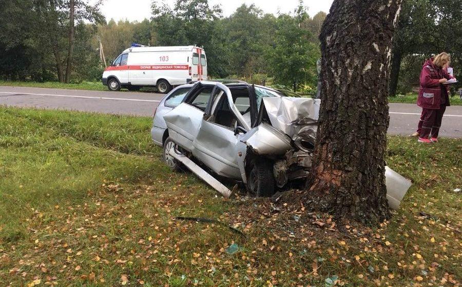 В Вилейском районе легковушка влетела в дерево, погиб водитель (фото)