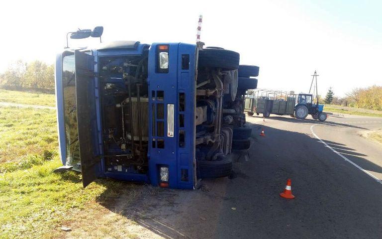 Под Молодечно перевернулся грузовик с 200 свиньями: часть животных погибла