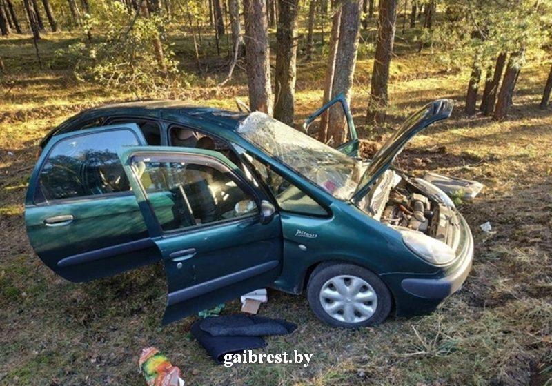 Под Ганцевичами женщина неудачно совершила обгон: съехала с дороги и врезалась в дерево