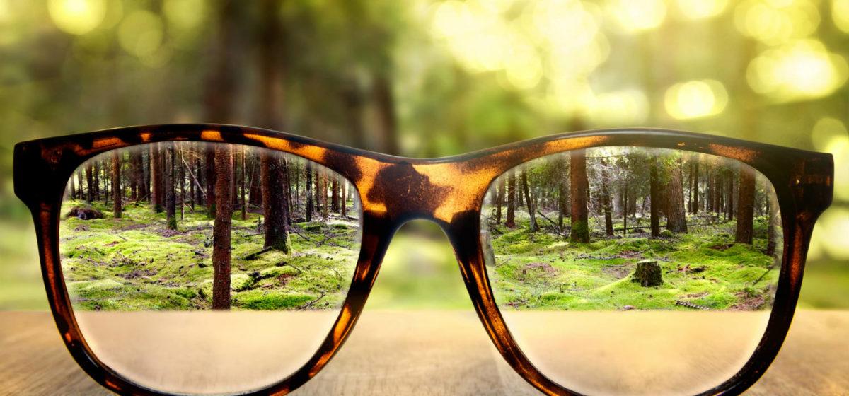 Продукты, которые защищают от потери зрения