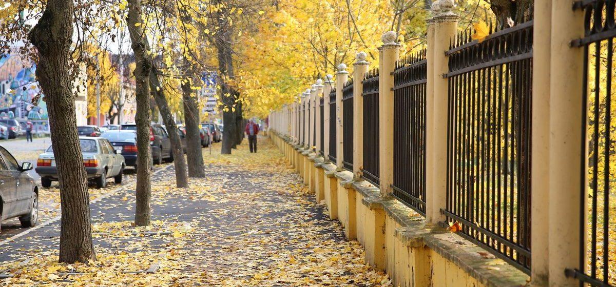 Метеорологи рассказали, вернется ли тепло на выходные в Барановичи
