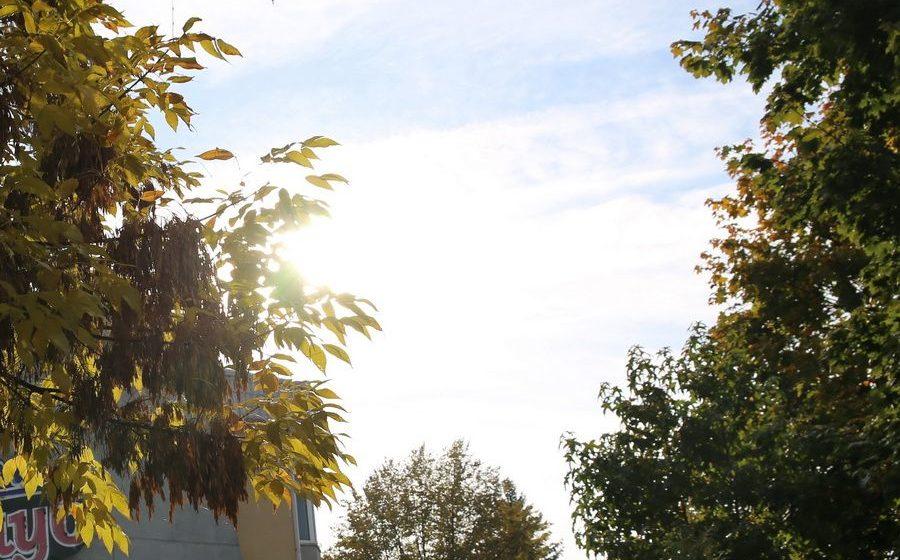 Без осадков и до +19 °С будет в Беларуси 11 октября