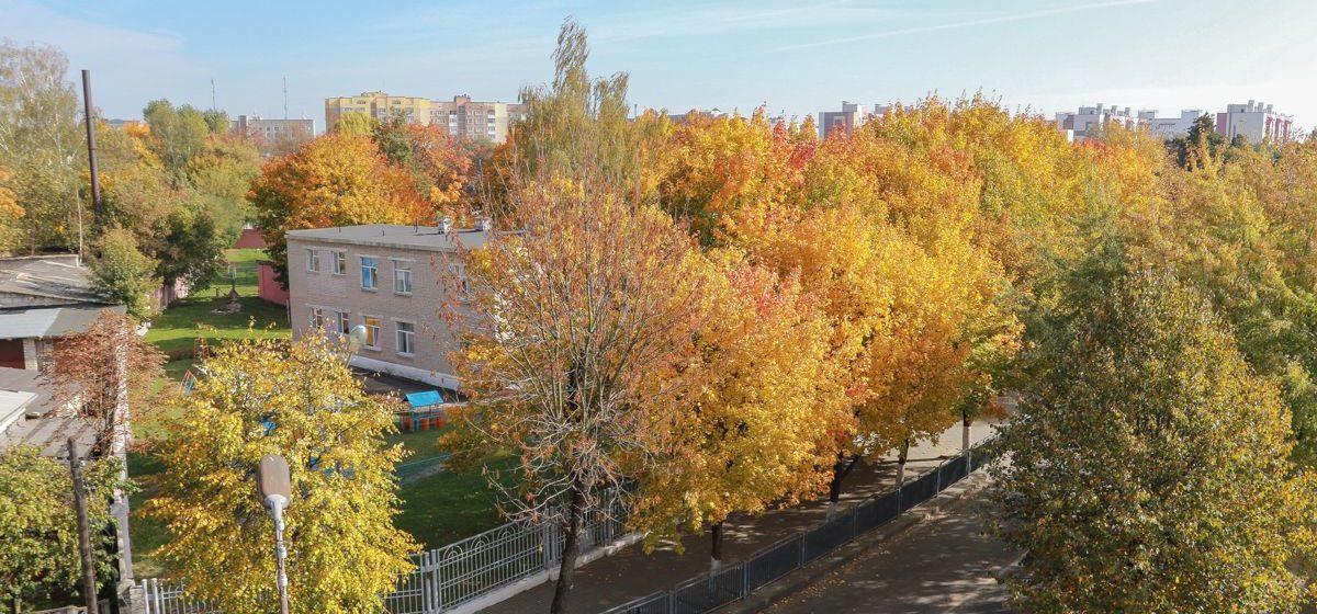 До +18 °С. Метеорологи рассказали о погоде в Барановичах 2 октября
