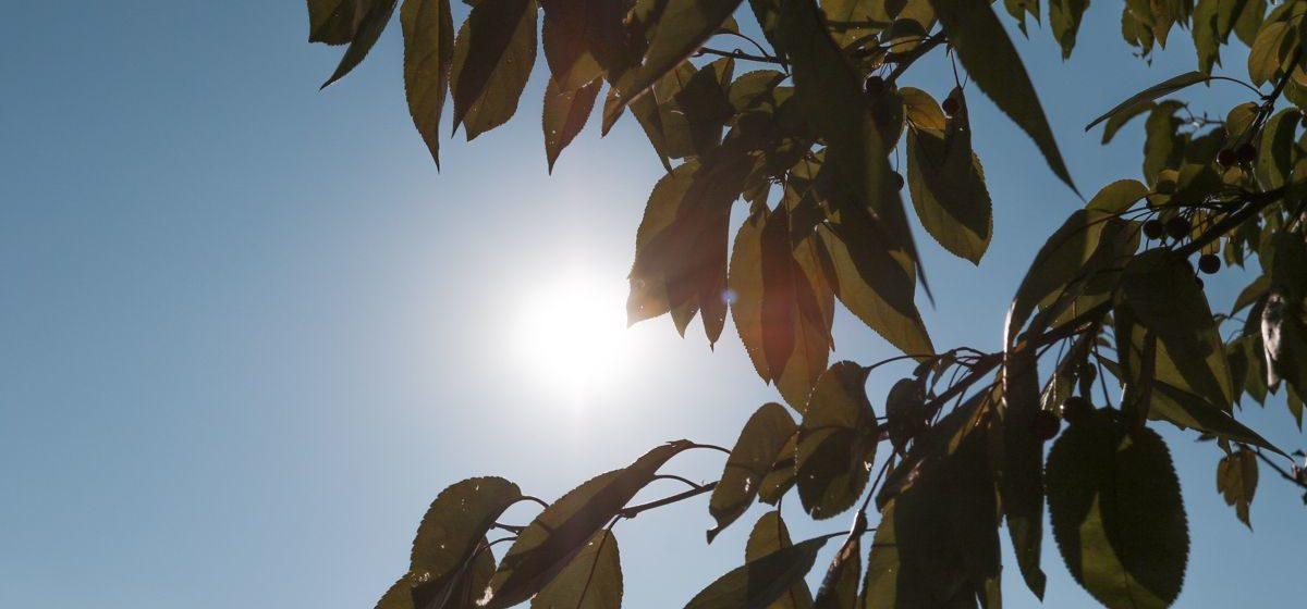 Синоптики сообщили, какая погода будет в понедельник, 15 октября