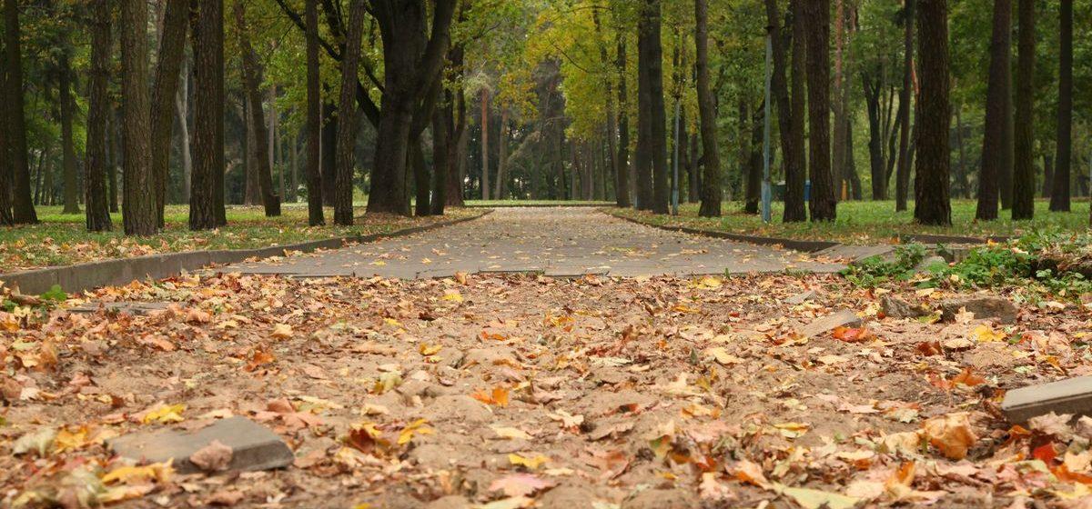 Старый парк в Барановичах подготовят к оборудованию спортивной площадки