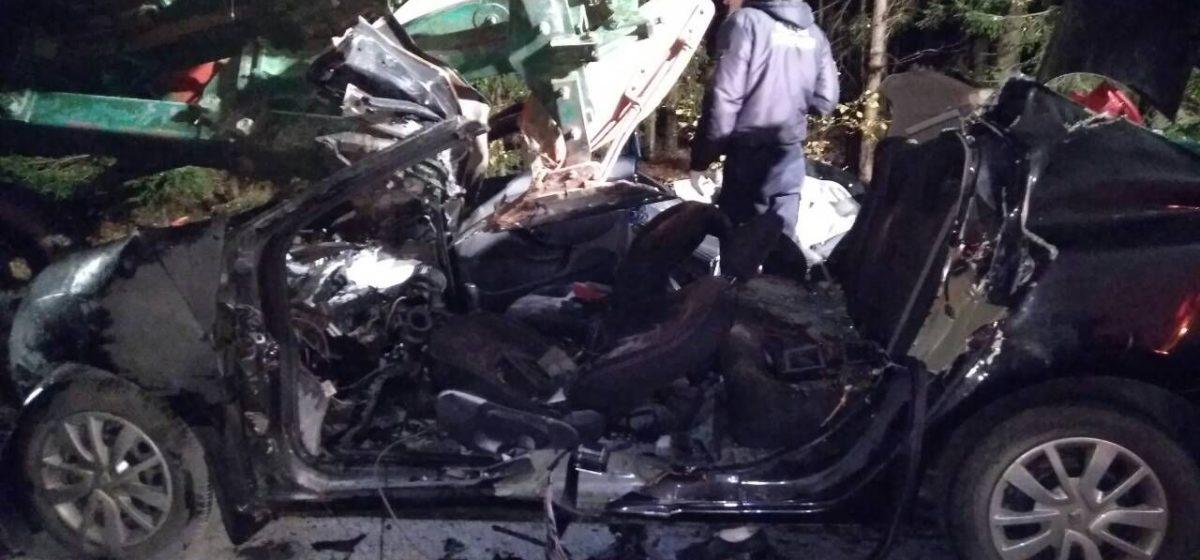 В Могилевской области Renault въехало в трактор с плугами. Погибли четыре женщины, еще одна тяжело травмирована