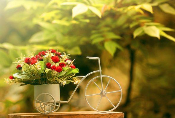 Что может предложить доставка цветов сегодня?