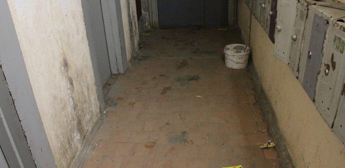 В Минске 12-летнюю девочку покусала крыса. Ребенок в больнице (видео)