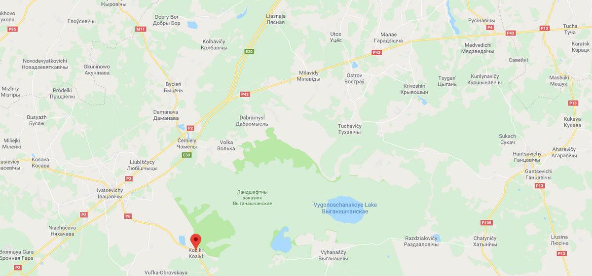 Медведь разоряет пасеки в Ивацевичском районе