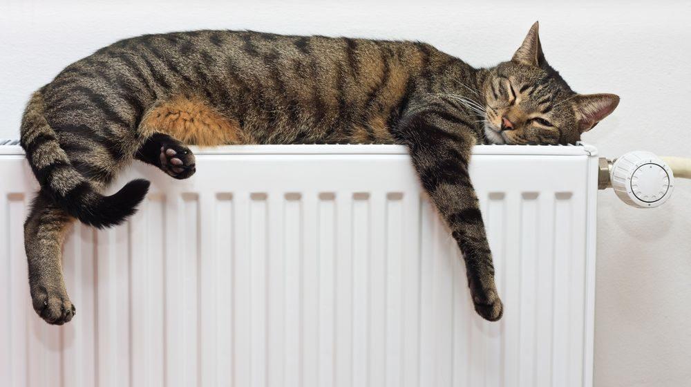 В Барановичах начинают включать отопление, но не всем