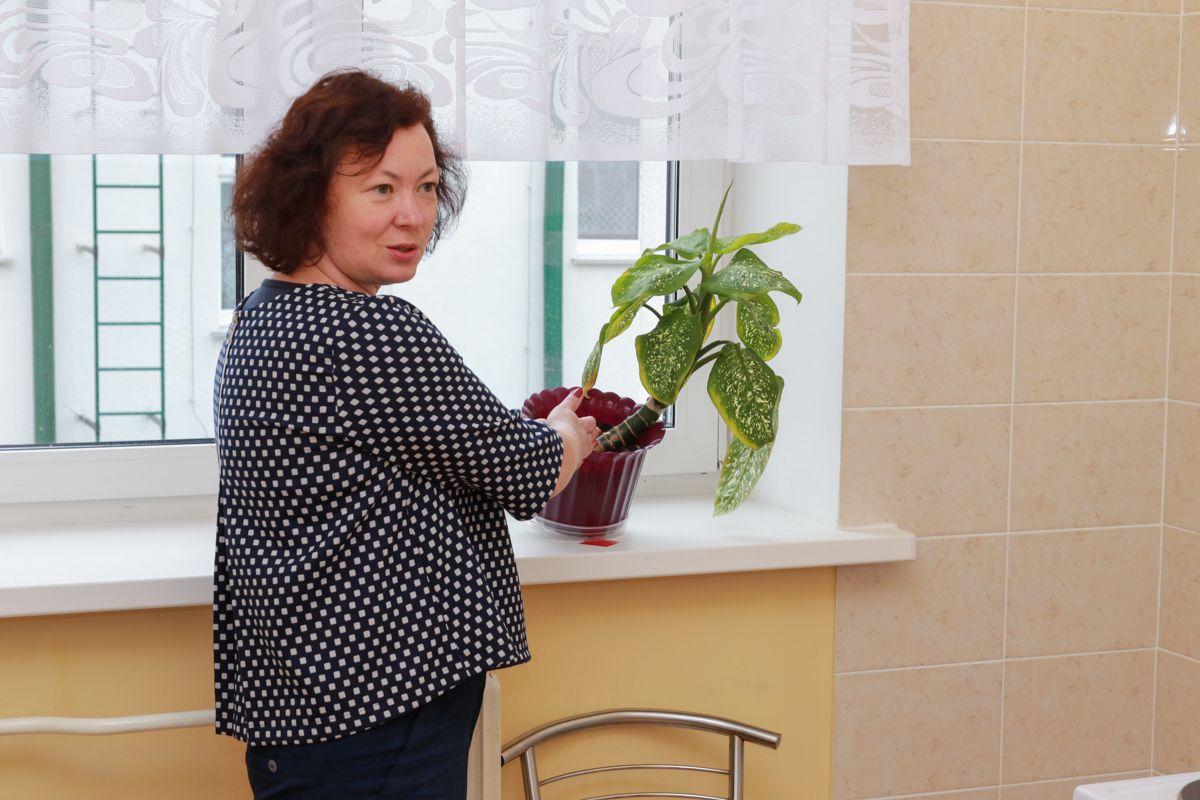 Помимо того, что ребенок может наесться земли из горшка с комнатным растением, он может сбросить его себе на голову. Кроме того, растение может оказаться ядовитым. Фото: Александр ЧЕРНЫЙ