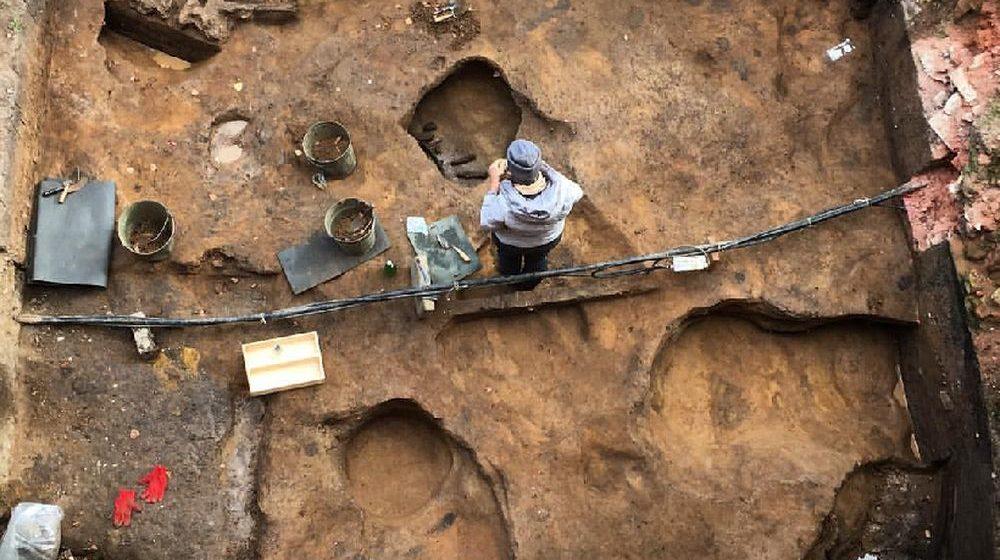В Московской области археологи нашли череп мамонта со спрятанным внутри кладом