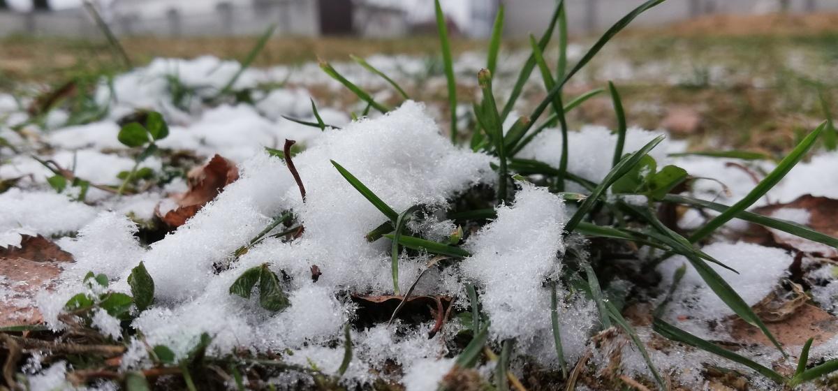 Слякоть, дождь и снег. Метеорологи рассказали о погоде 8 декабря