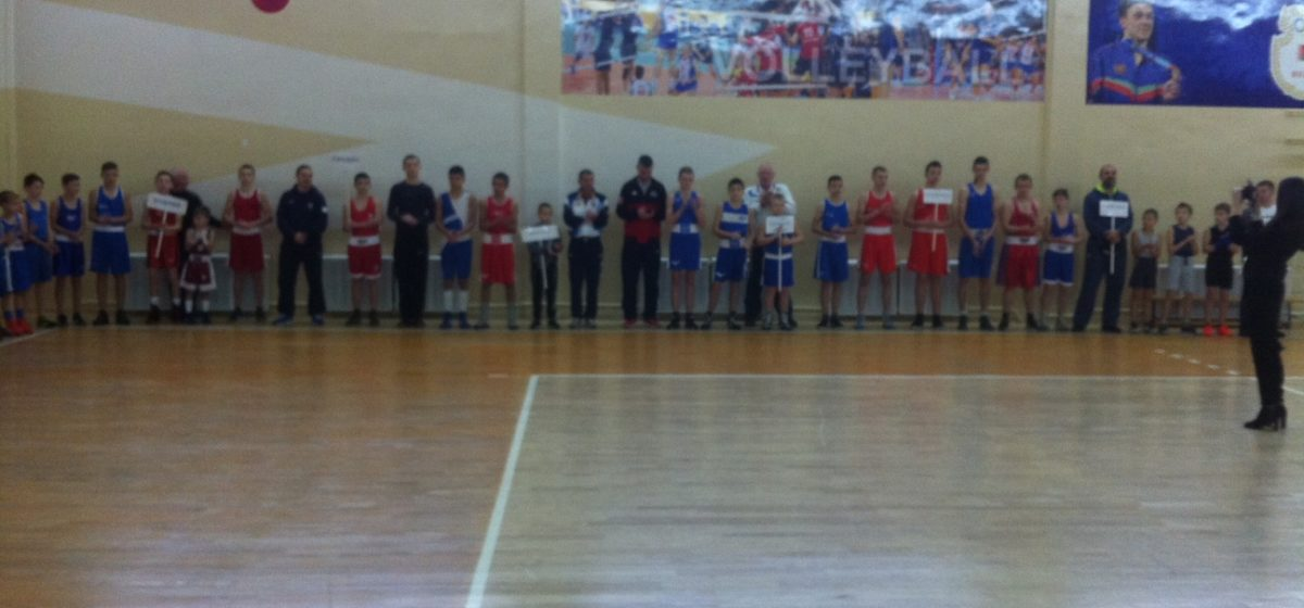 Барановичские боксеры привезли четыре награды с международного турнира в Кобрине