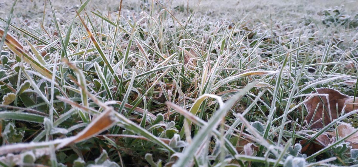 Последнее теплое воскресенье в октябре, на следующей неделе – заморозки и снег