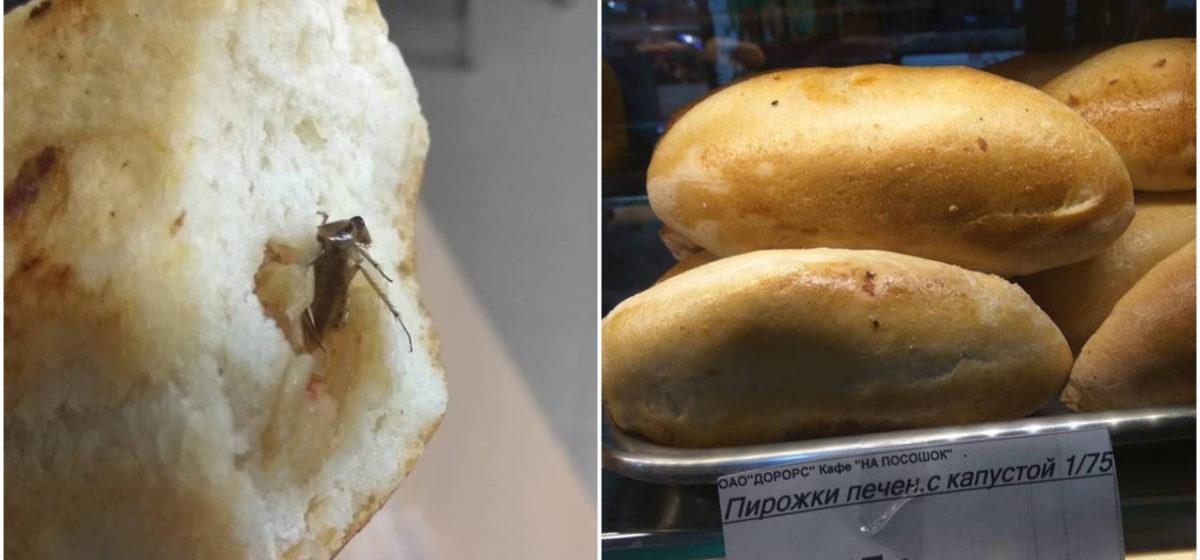 Пирожок печеный с тараканом? Как минский вокзал встретил гостей из Чехии